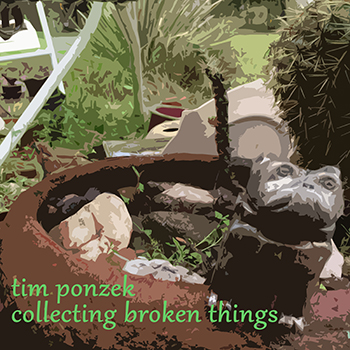Collecting Broken Things
